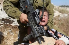 The Children of the Blessed Land (Palestine) Continue Paying Dearly